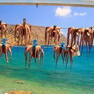 Iubeste Grecia