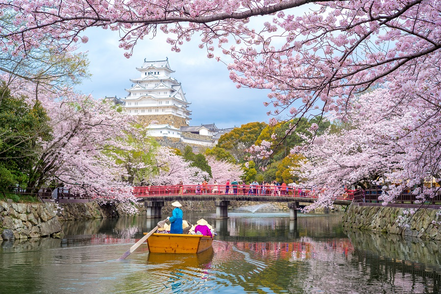Tokyo 2019 - Orasul Contrastelor