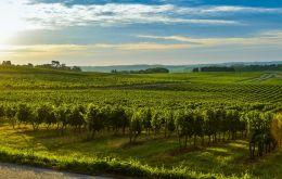 Bordeaux 2018 - Capitala Mondiala A Vinului