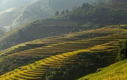 Vietnam, Cambodgia, Thailanda 2018 - Meandrele Mekongului Si Magia Siamului