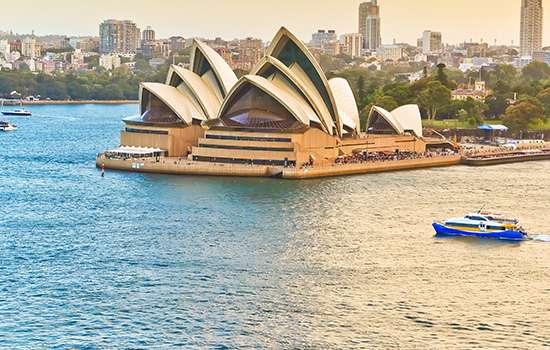 Australia si Noua zeelanda<br>21.11.2018