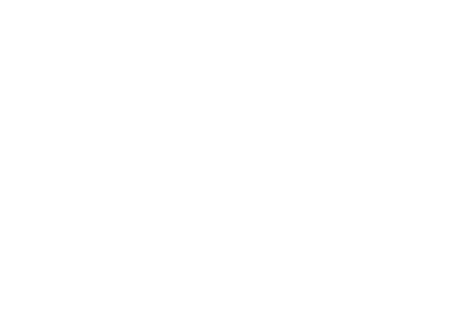 Vacante de 1 Decembrie