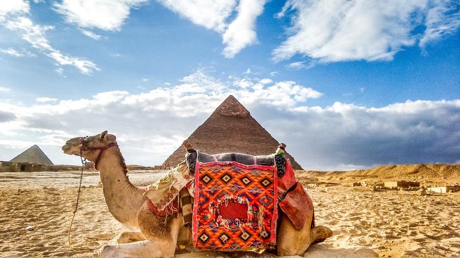 Egipt - Paste 2020