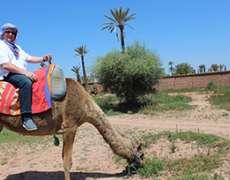 Alin Burcea in Maroc