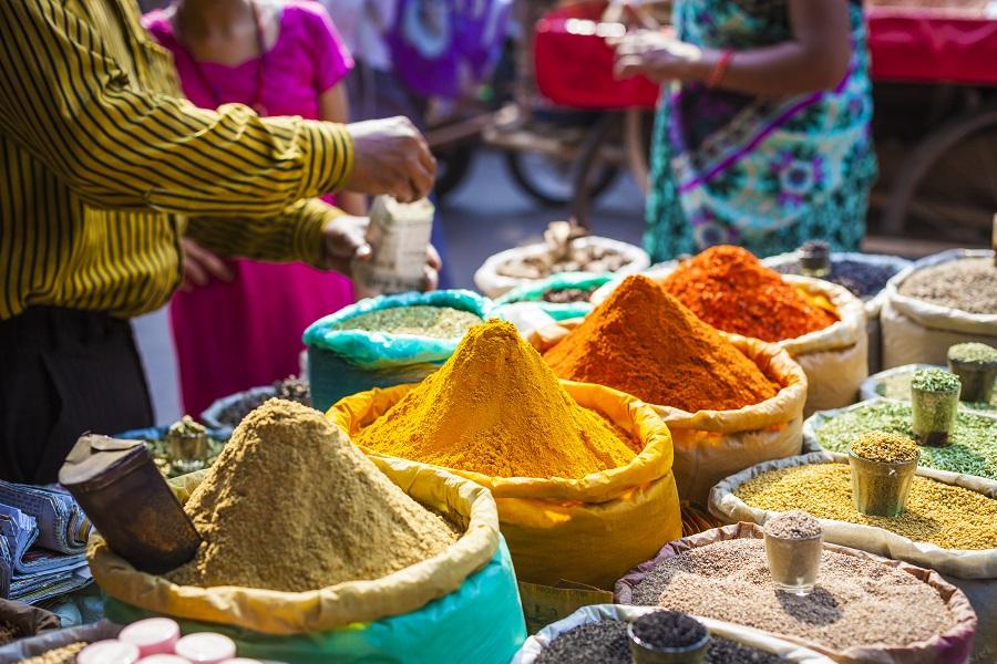 India - Triunghiul De Aur - 2020