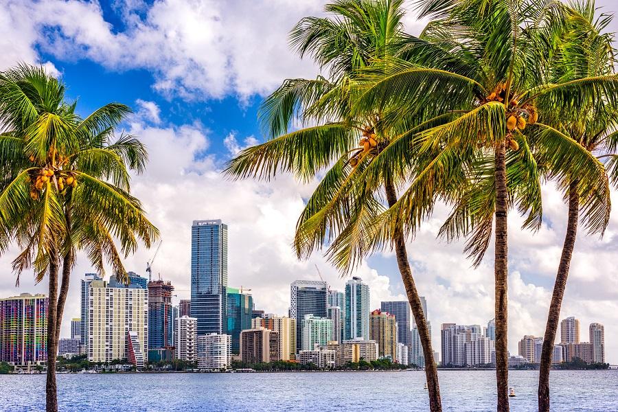 Miami Si Croaziera Bahamas - Revelion 2020