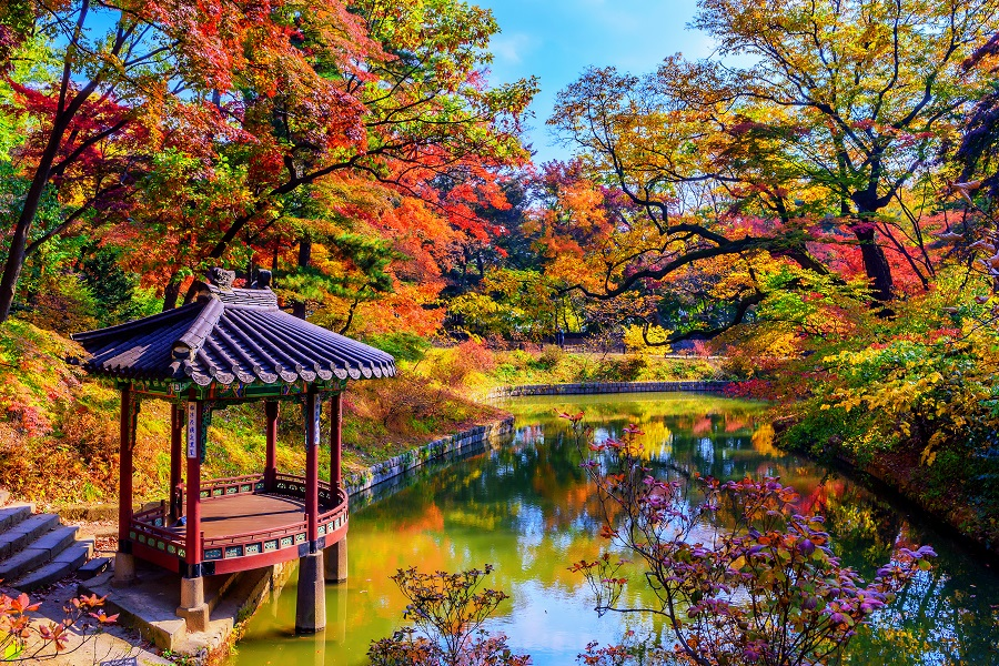 Japonia Si Koreea De Sud 2020 - Plecare Din Bucuresti