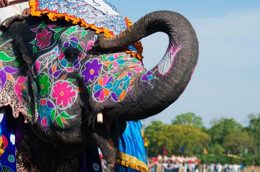 India Si Rajasthan 2020 - Plecare Din Timisoara
