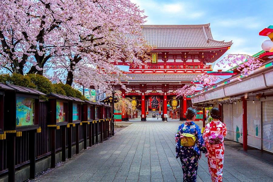 Japonia Si Coreea De Sud 2020 - Plecare Din Cluj