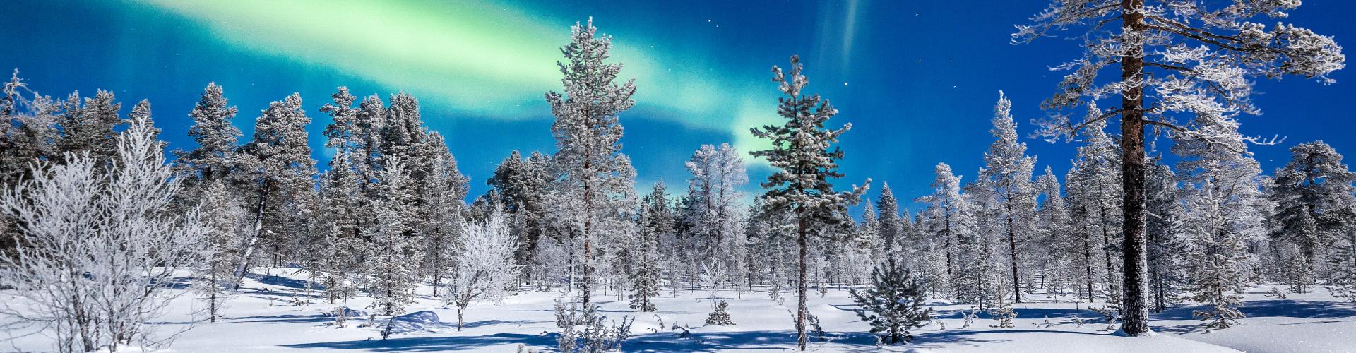 Charter Laponia