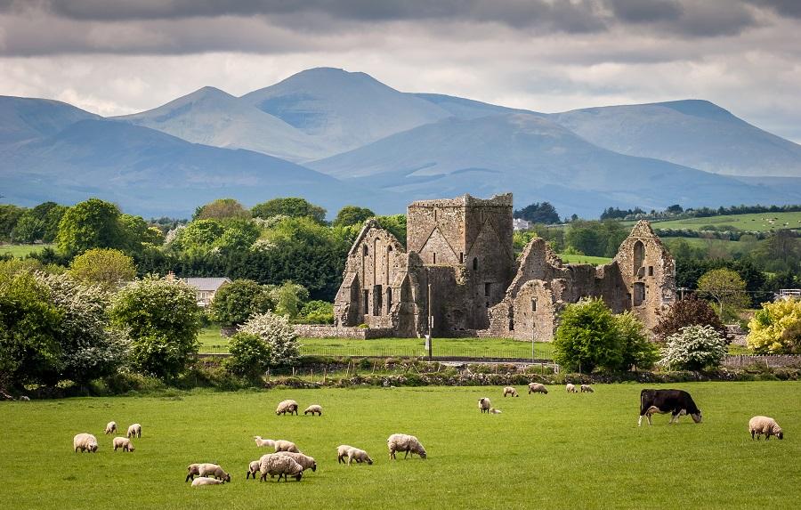 Descrierea, istoria și zona Irlandei - Mediul înconjurător