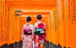 Japonia 2021 - Sarbatoarea Ciresilor In Floare
