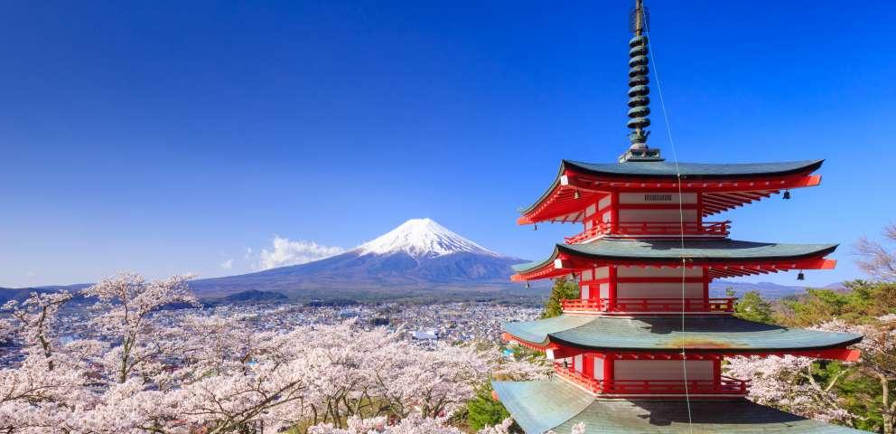 Intalnirea japoneza unica