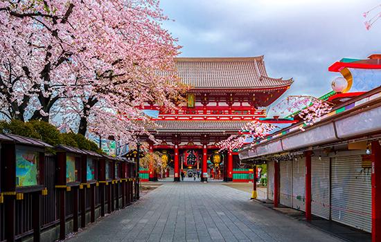 Japonia Si Coreea De Sud 2021 - Plecare Din Cluj