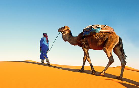 Intalnire unica Tunisia. Dating? i site- ul de prietenie